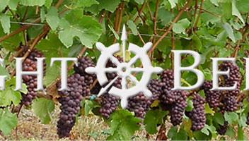 eight bells winery