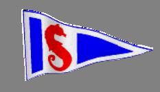 SBYC-Logo-Flag